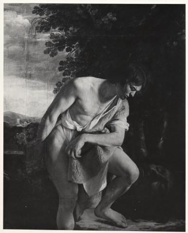 Istituto Centrale per il Catalogo e la Documentazione: Fototeca Nazionale , Galleria Spada. O. Gentileschi. Davide - insieme